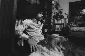 prince-dog